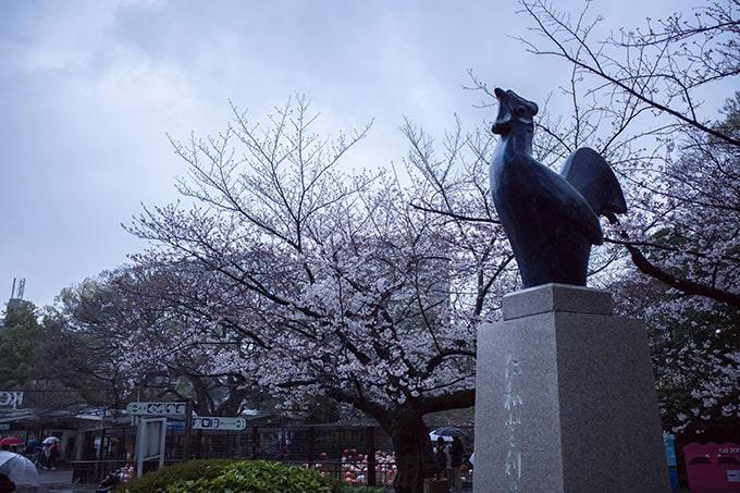 神戸フォトウォーク20190330_オブジェと桜