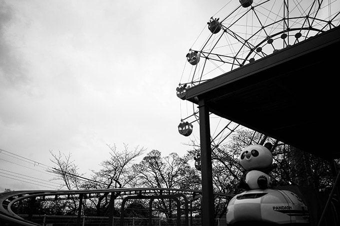 神戸フォトウォーク20190330_モノクロ観覧車とパンダ
