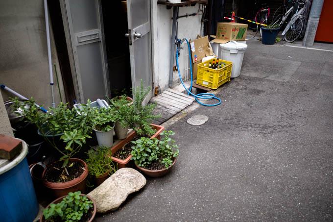 GRIII(GR3)中崎町フォトウォーク_道の草