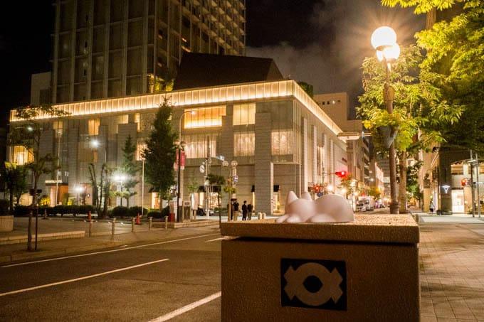 NekoCup(ネコカップ)_夜の街の写真