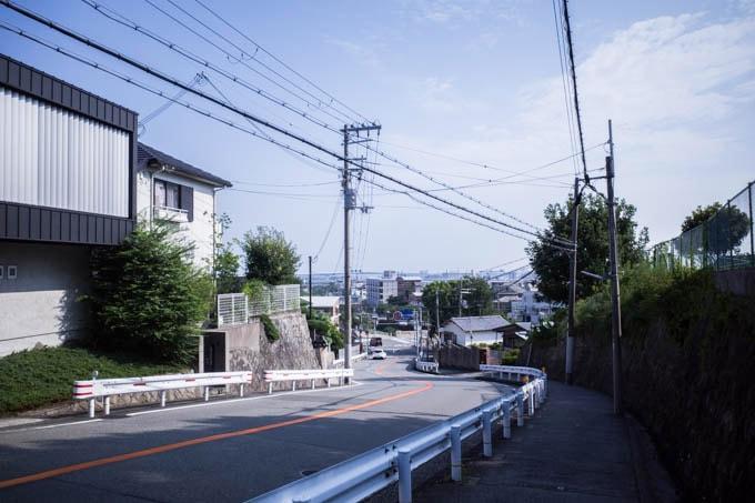 ヨドコウ迎賓館(旧山邑家住宅)_坂の道のり