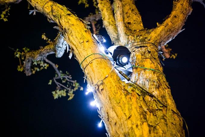 SIGMA fp(シグマエフピー)-神戸北野写真(夜)_クリスマスイルミ04