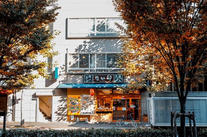 SIGMAfpティールオレンジin京都_なか卯と木漏れ日