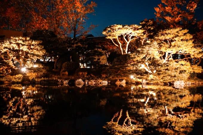 京都市京セラ美術館_日本庭園(紅葉)