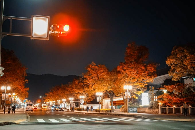 SIGMAfpティールオレンジin京都_紅葉と道路
